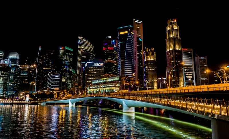 Singapore Germany green lane travel