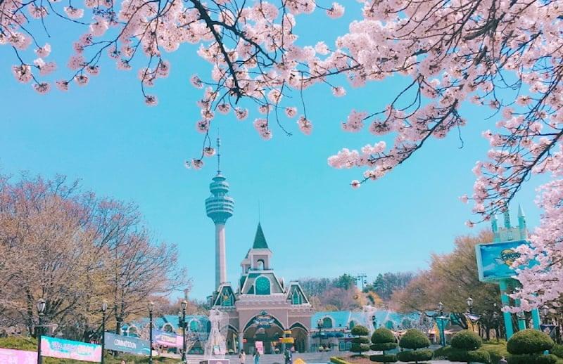 korea theme park