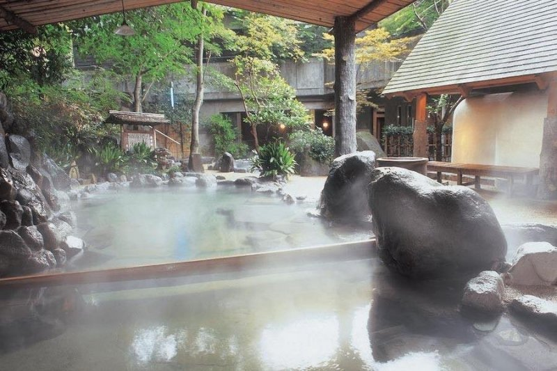 Top 10 Onsens in Hakone: Hot Springs for All Budgets