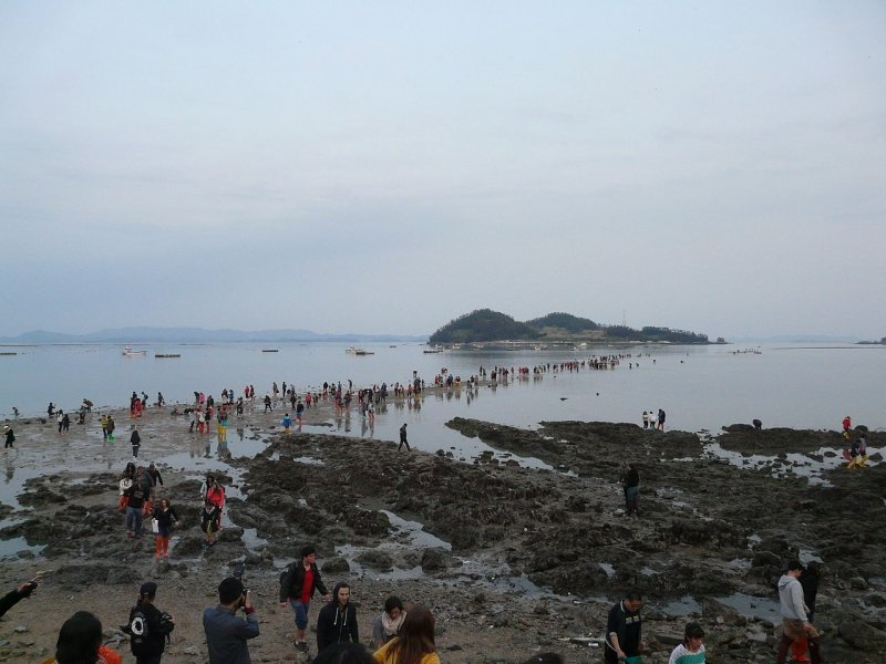 Jindo - parting of sea