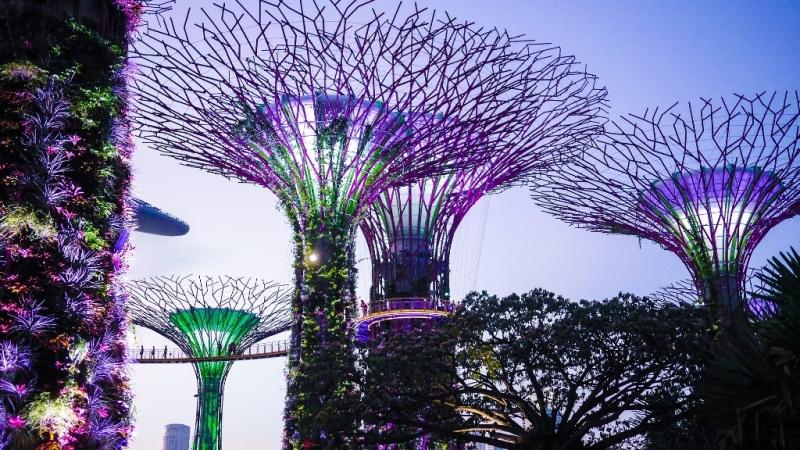singapore travel budget