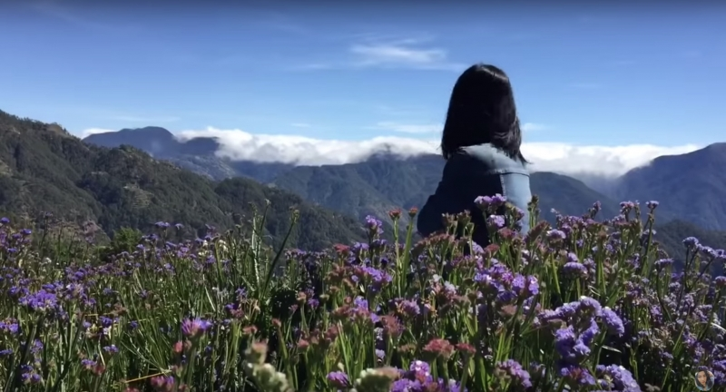 Northern Blossom Flower Farm is one of the must-visit flower farms in the Philippines