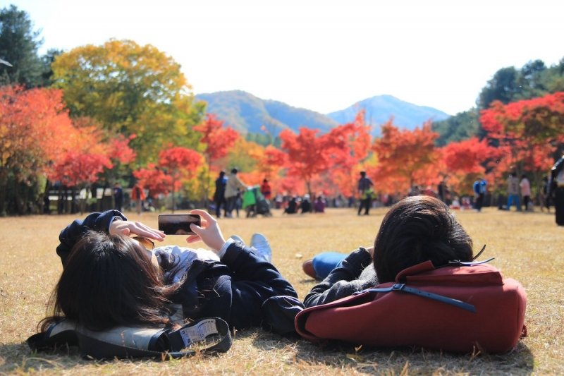Nami Island for your 4 days Korea itinerary