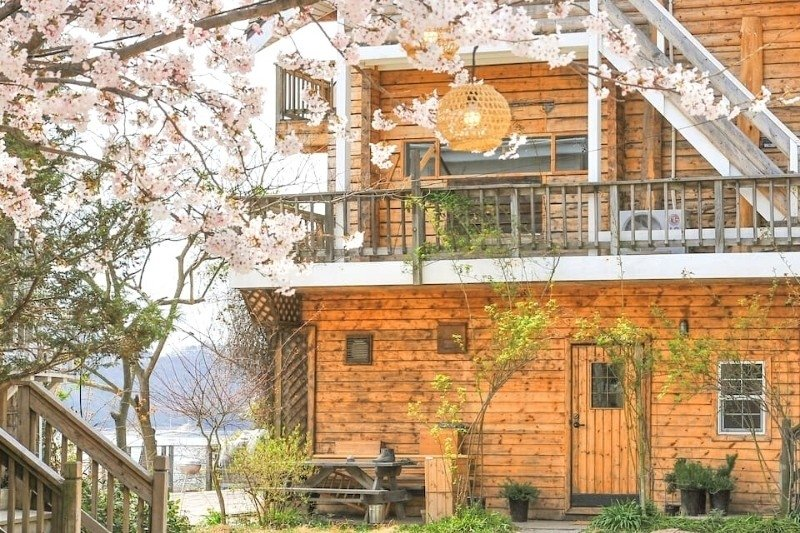 Best Cabin Retreats in South Korea You Can Book on Airbnb