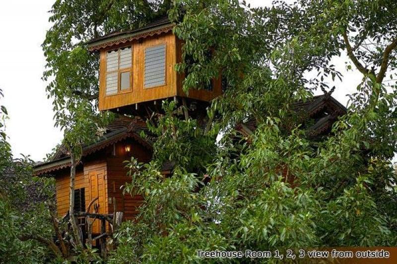 pai treehouse resort