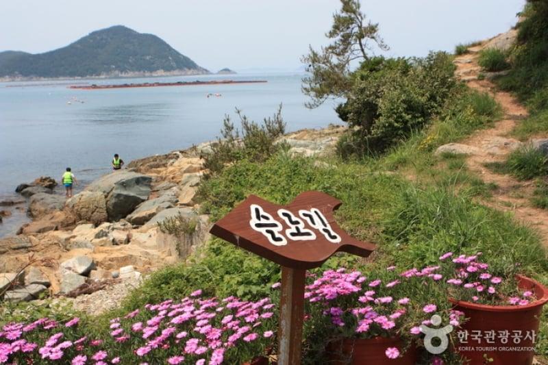 Cheongsando walking path