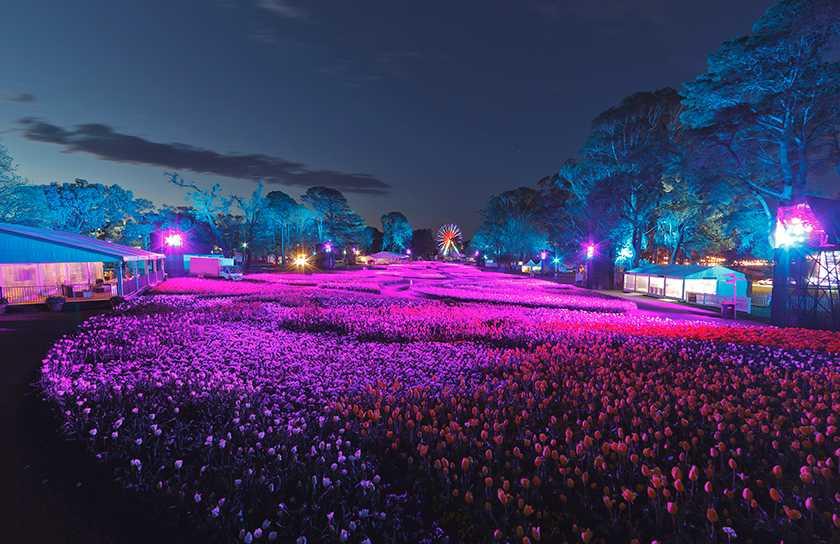 floriade nightfest