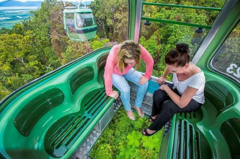 Rainforest Cableway
