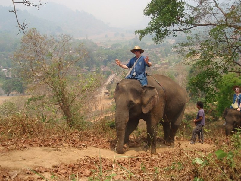 national animals Southeast Asia