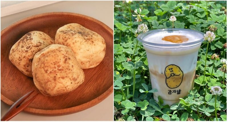 Gamza Latte and Gamza Bread