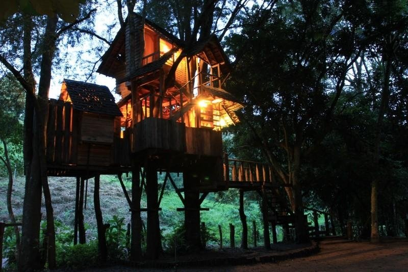 Tree House Resort For Rabeang Pasak Tree House Resort Coolest Houses In Thailand That You Can Sleep In Tripzillastays