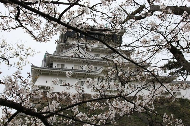 kokura castle and garden