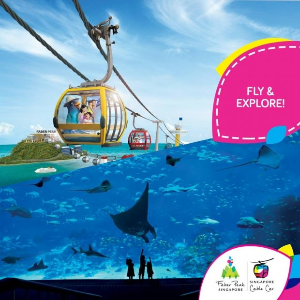 Fly and Explore with Singapore Cable Car and SEA Aquarium Promotion