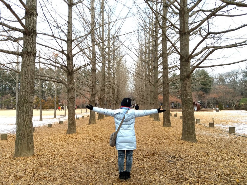 nami island as part of our korea winter itinerary