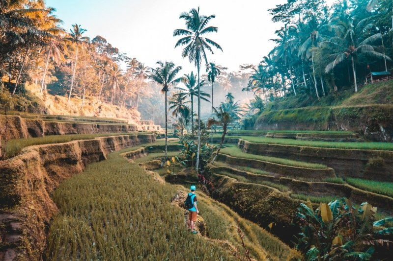 Lịch trình du lịch Bali - Ngày 3: Núi Batur