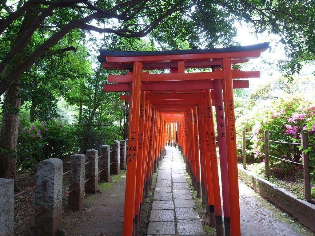 Địa Điểm Chụp Hình Sống Ảo Ở Tokyo Nezu