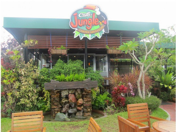 Cafe Jungle