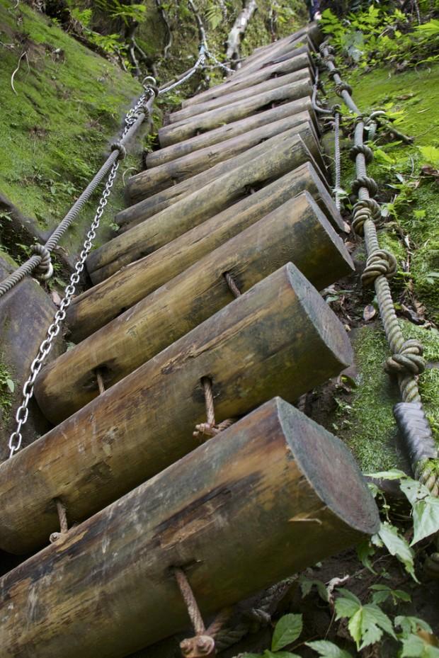 Madeira logs escada