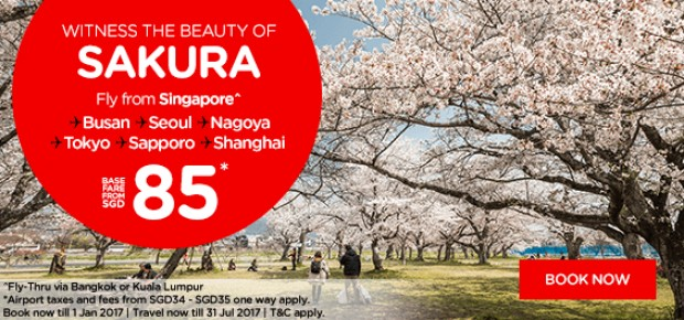 Witness the Beauty of Sakura with Flights on AirAsia from SGD85