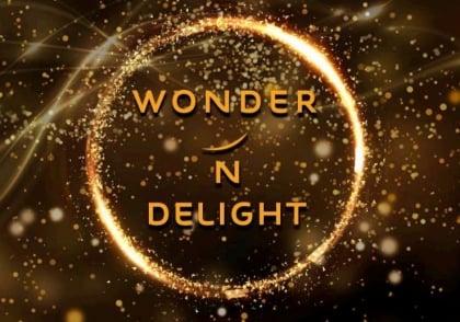 Wonder N Delight