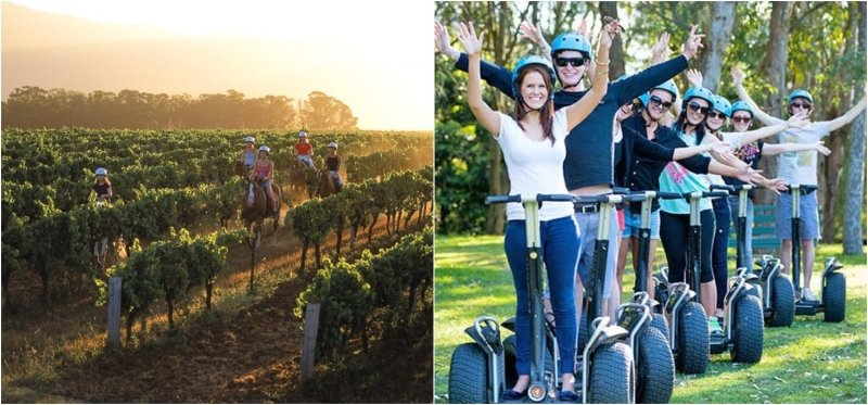 Hunter Valley Resort Segway and Horseriding Tours