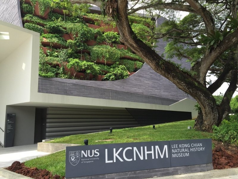 Lee Kong Chian National History Museum