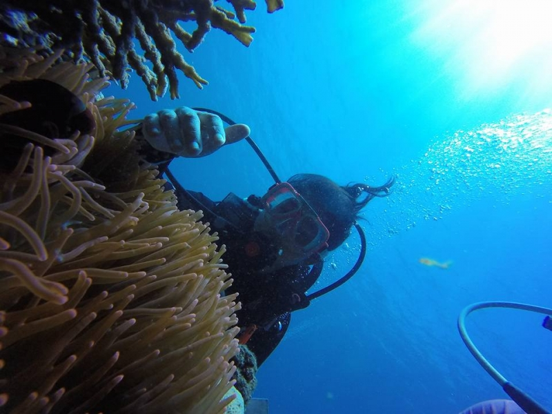 diving spots philippines