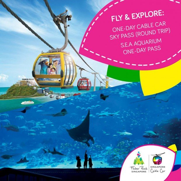 Save 20% Off Tickets with Singapore Cable Car and S.E.A Aquarium Combo Deal