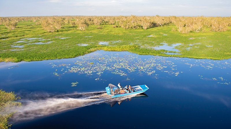 mary river wetlands airboat ride