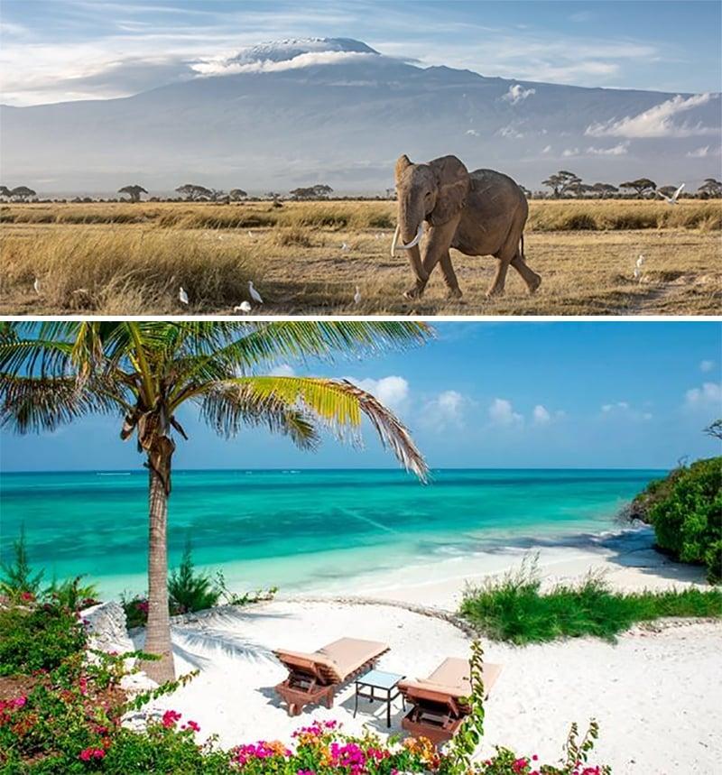 contrast of tanzanian safari and zanzibari beach
