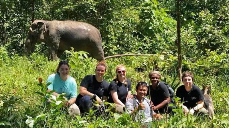 burm and emily's elephant sanctuary