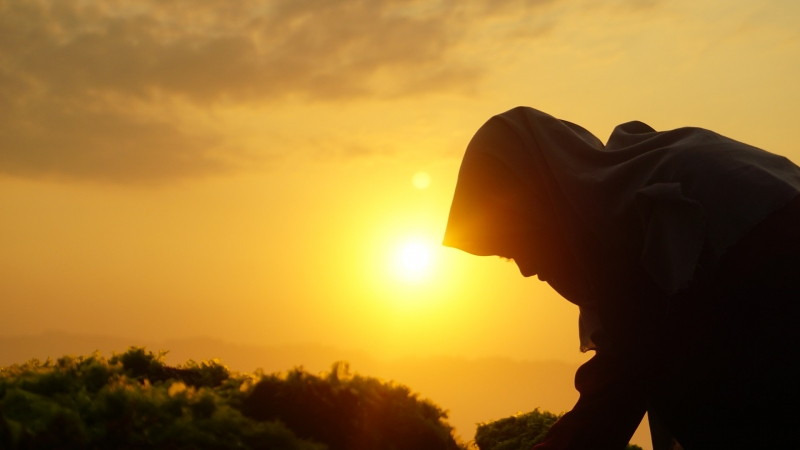 modern malay muslim woman