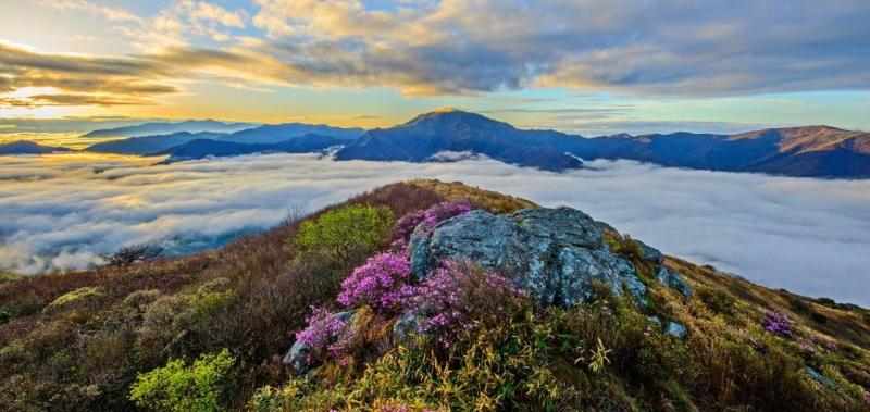 spring jirisan national park nature parks south korea