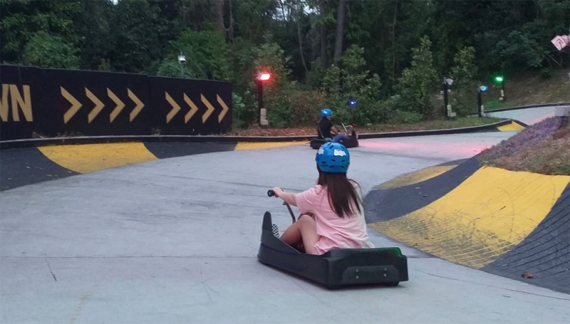 riding downhill on the Luge
