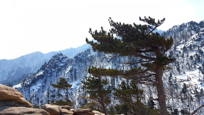 things to do in gangwon-do