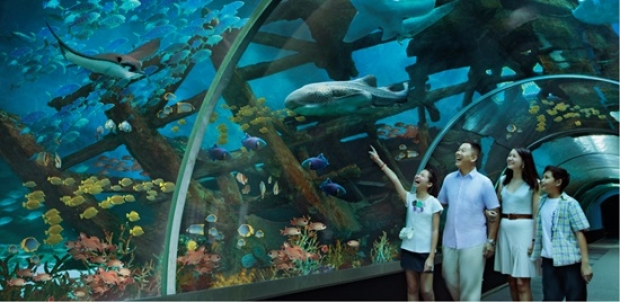 S.E.A. Aquarium Family Annual Pass Bundle at SGD272 in Resorts World Sentosa