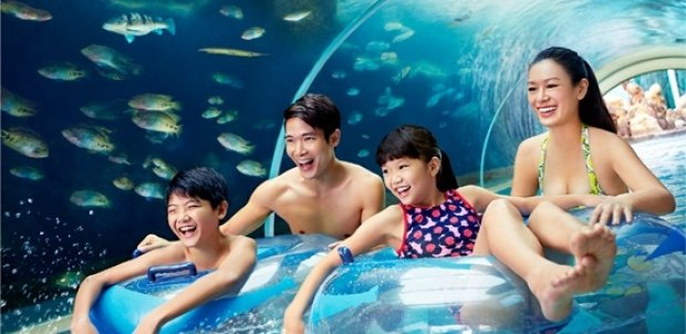 Adventure Cove Waterpark Adult One-Day Ticket + Free Slushie at SGD34