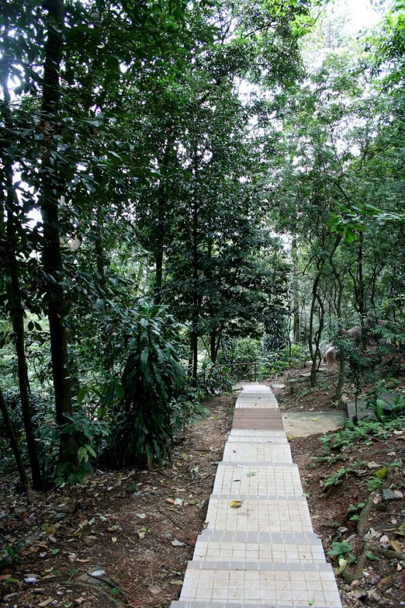 Lịch Trình Du Lịch Kuala Lumpur công viên sinh thái