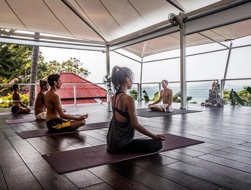 vikasa yoga retreat
