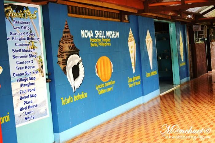 Nova Shell Museum