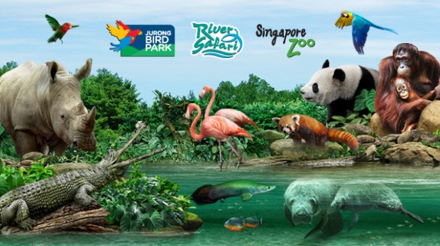 NTUC, PAssion and SAFRA Card Members' Promotion at Wildlife Reserves Singapore Parks