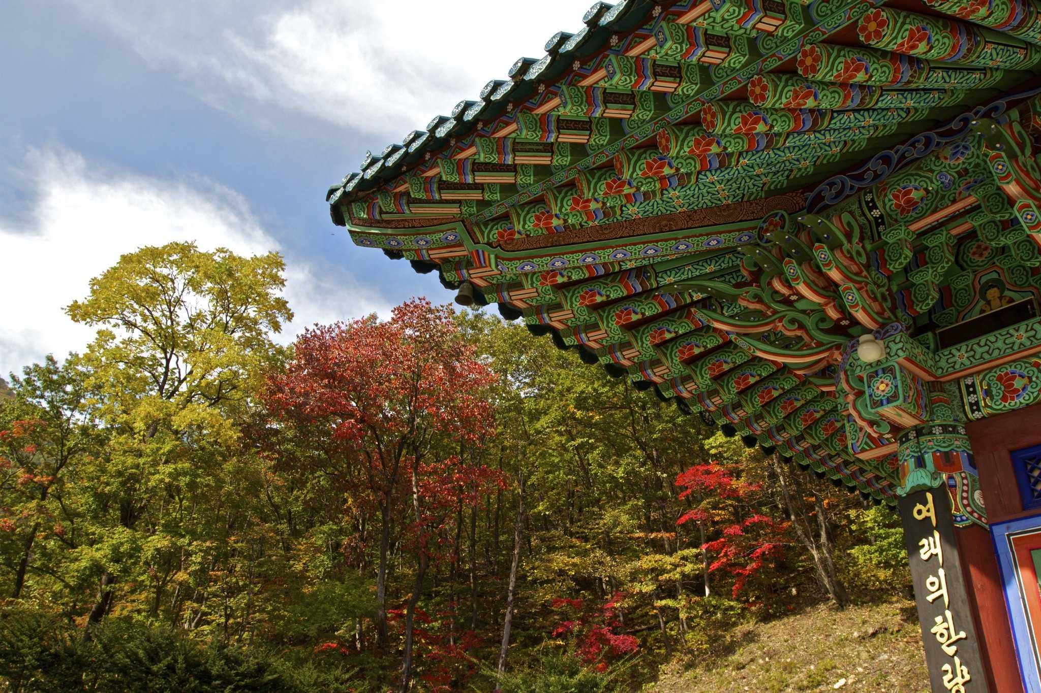 South Korea solo travel