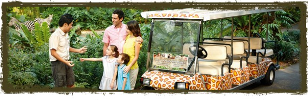 Win a Behind-the-Scenes Tour for Two in Singapore Zoo
