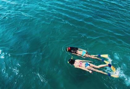 Surf & Turf Package