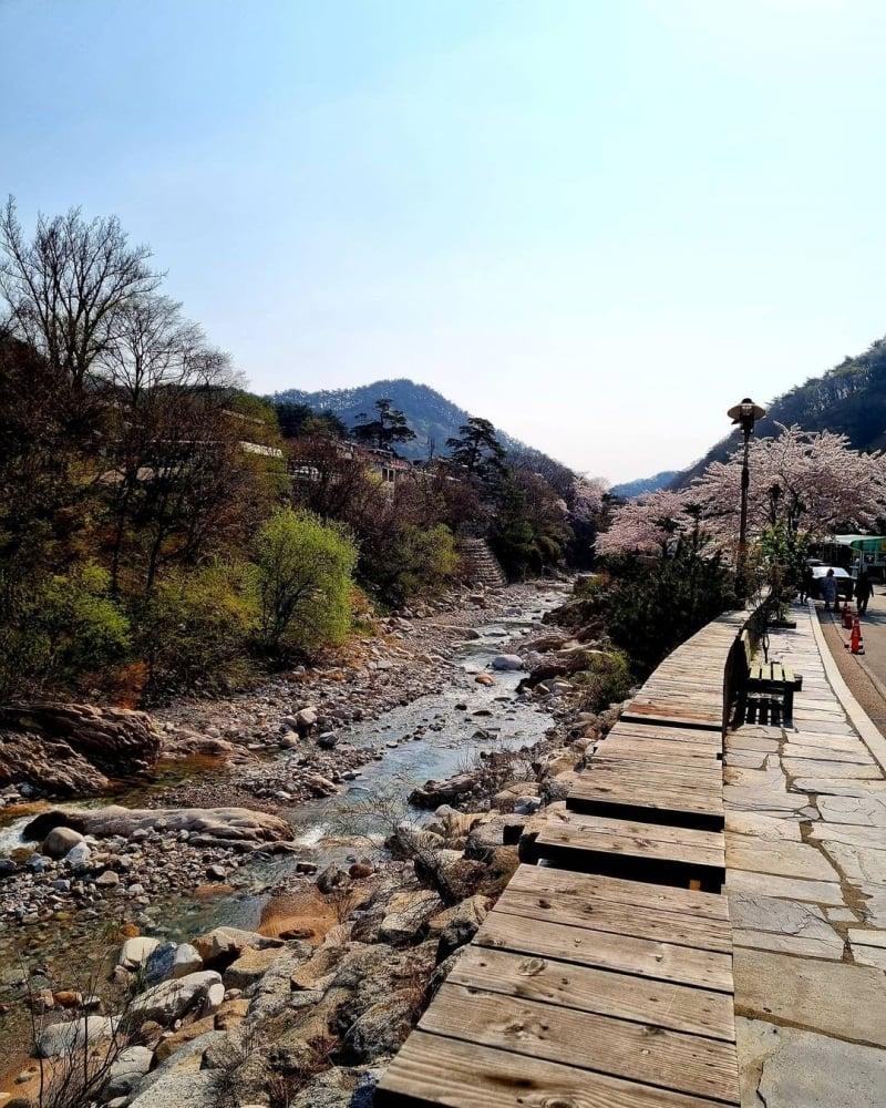 osaek hot springs
