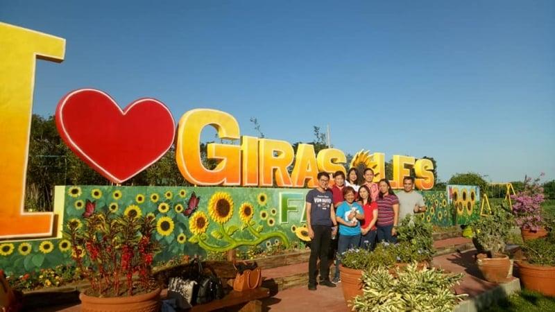 sunflower field quezon province