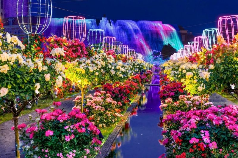 Flower Park Japan: Huis Ten Bosch