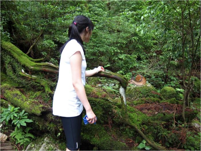 hiking at Yakushima