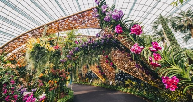 10% OFF Admission to the Conservatories in Gardens by the Bay with NTUC Card