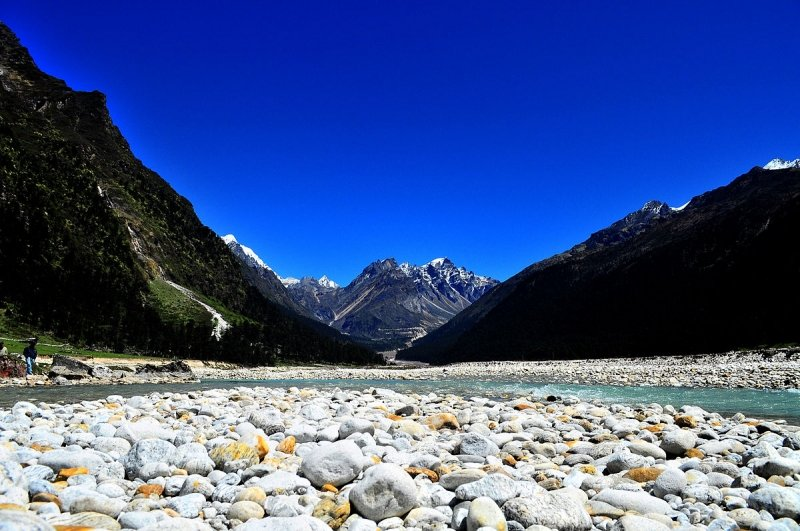 Things to do in Sikkim: Visit Yumthang Valley